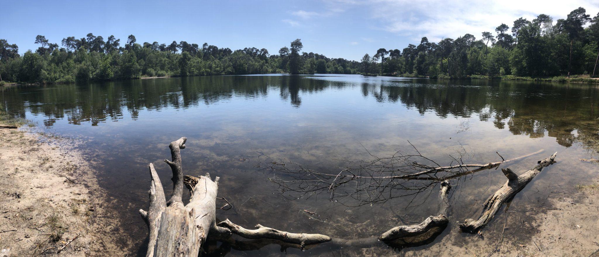 Mooi zicht op de hoofdonderdelen van de Oisterwijkse bossen en vennen