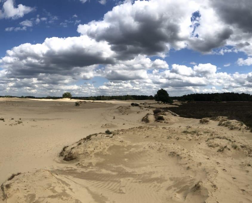 Weidse zichten op de Loonse en Drunense Duinen
