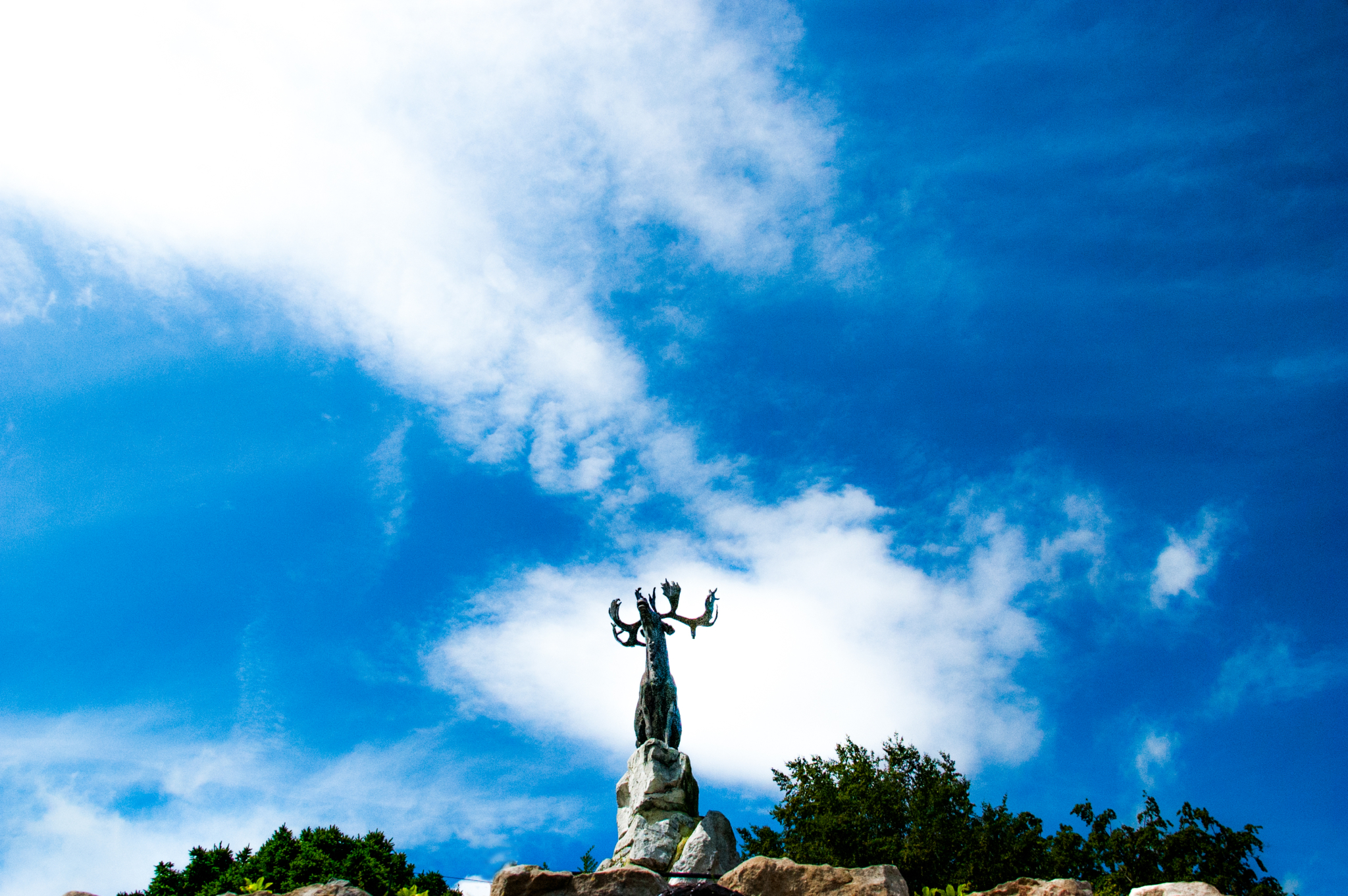 De indrukwekkende bronzen kariboe; het monument voor de Newfoundlanders die vielen tijdens de Slag aan de Somme