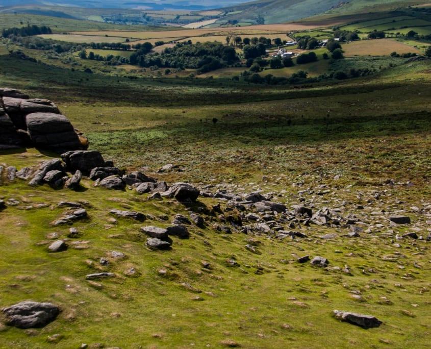 Wilde paarden in Dartmoor National Park