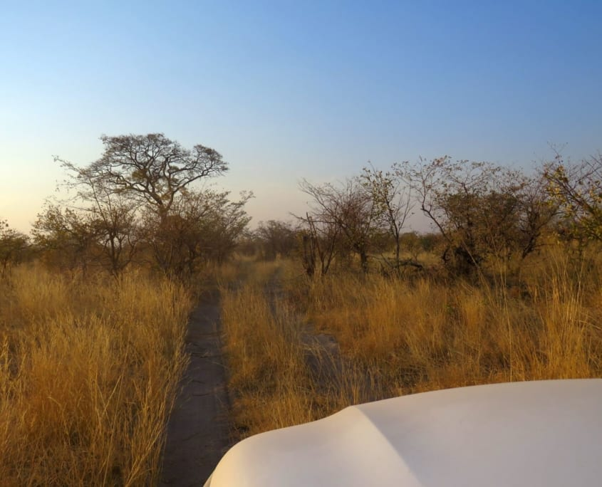 Op safari door Mudumu N.P.