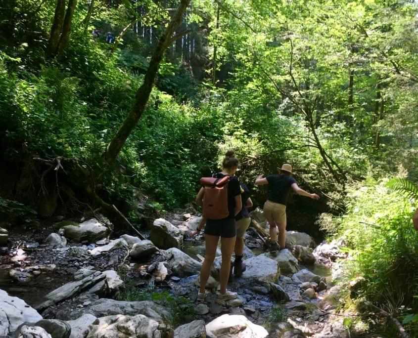 Op zoek naar de waterval
