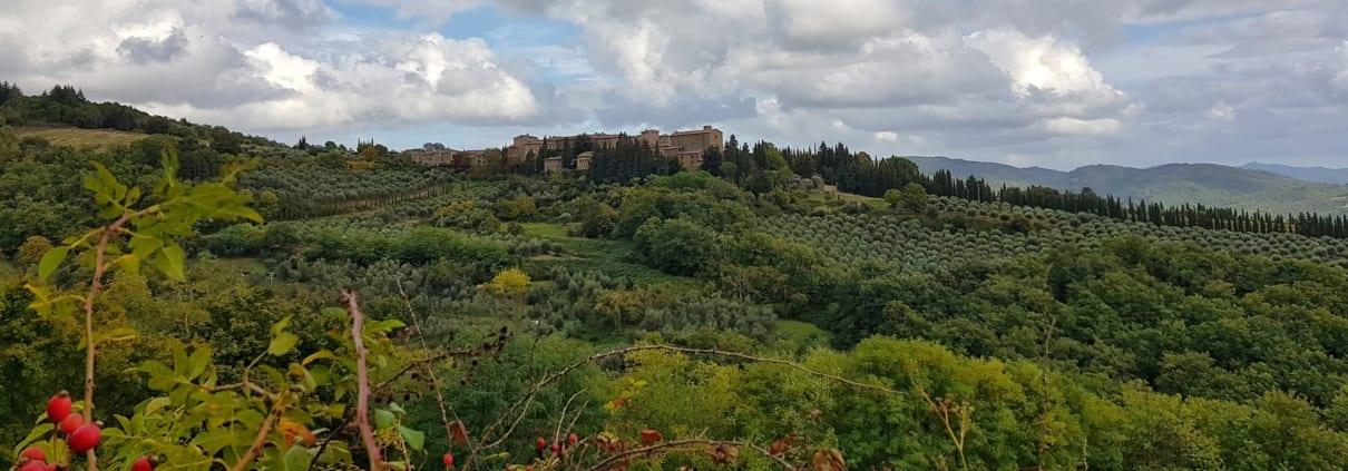 Toscaans landschap bij Volpaia