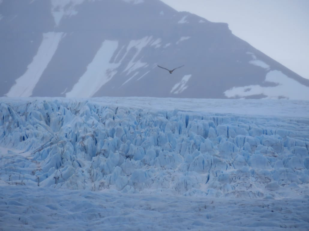 Nordenskiöld gletsjer op Spitsbergen