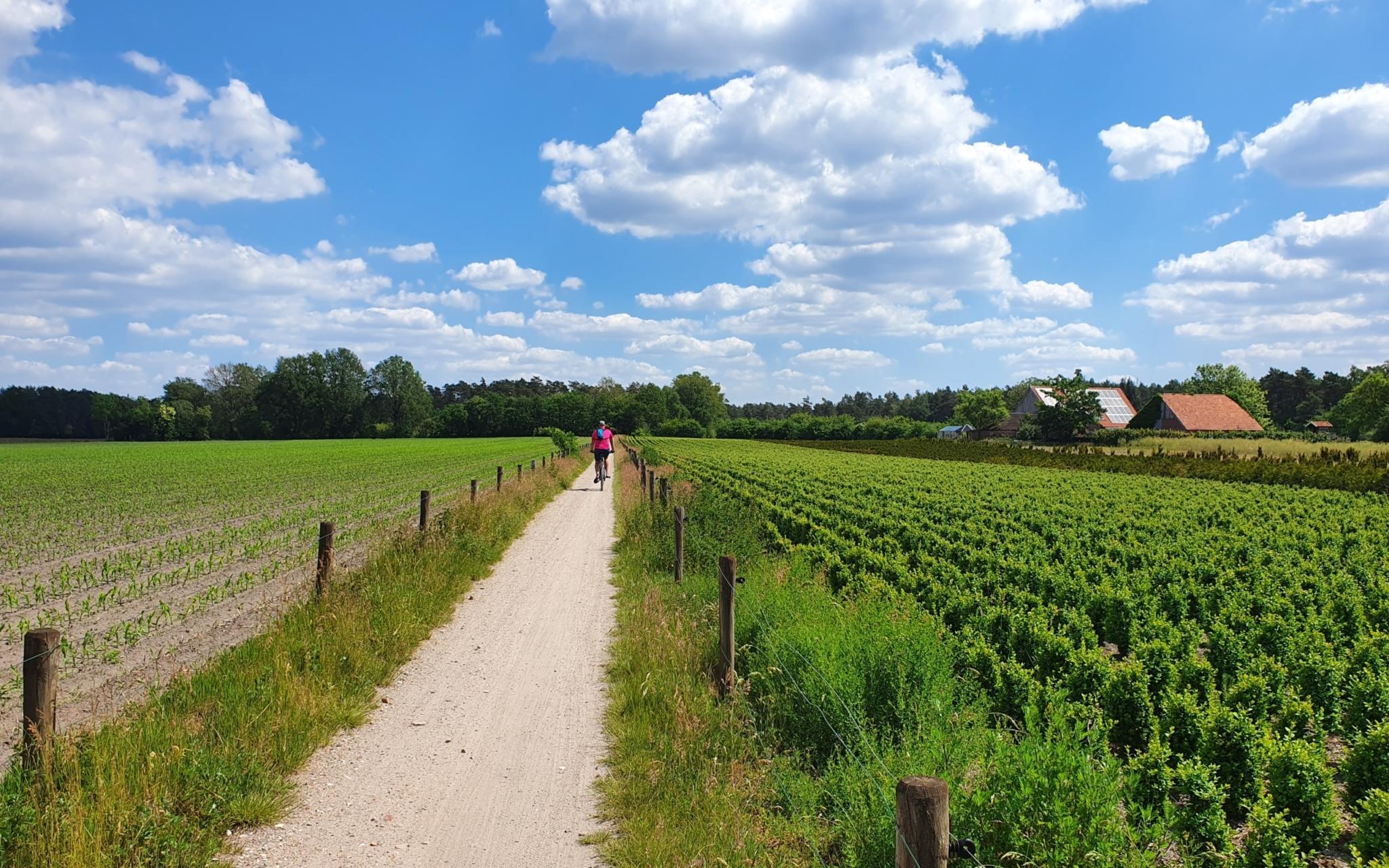 Fietsen door Noordoost-Twente