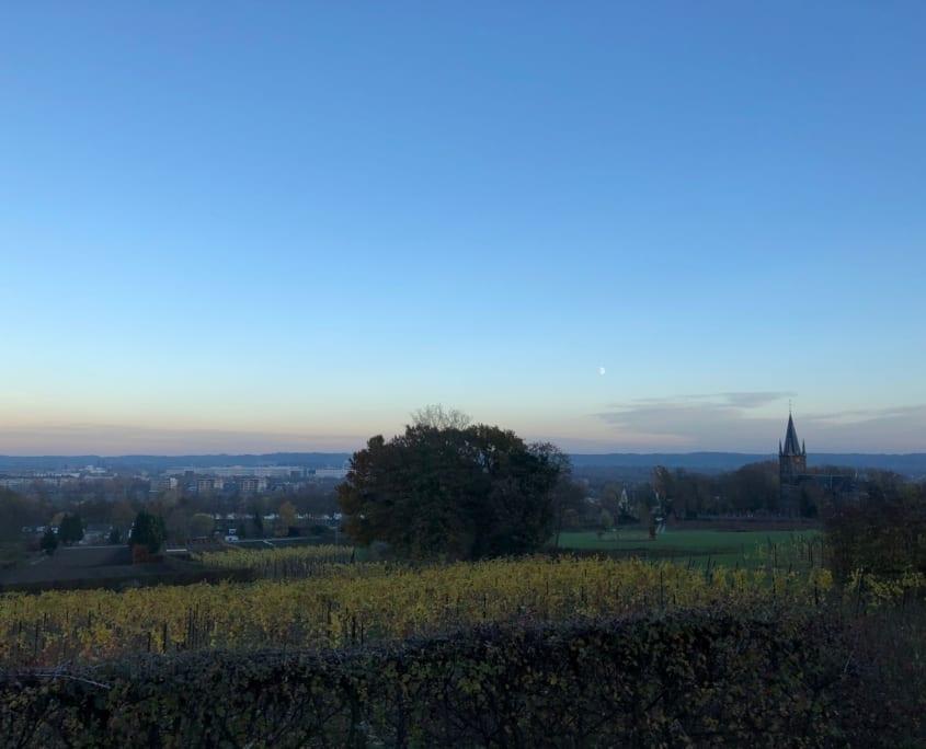 Uitzicht op de Maas en Maastricht