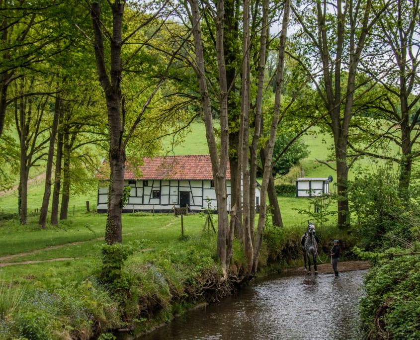 Zuid-Limburg op z'n typischt. Vakwerk, bos, heuvels en een beekje