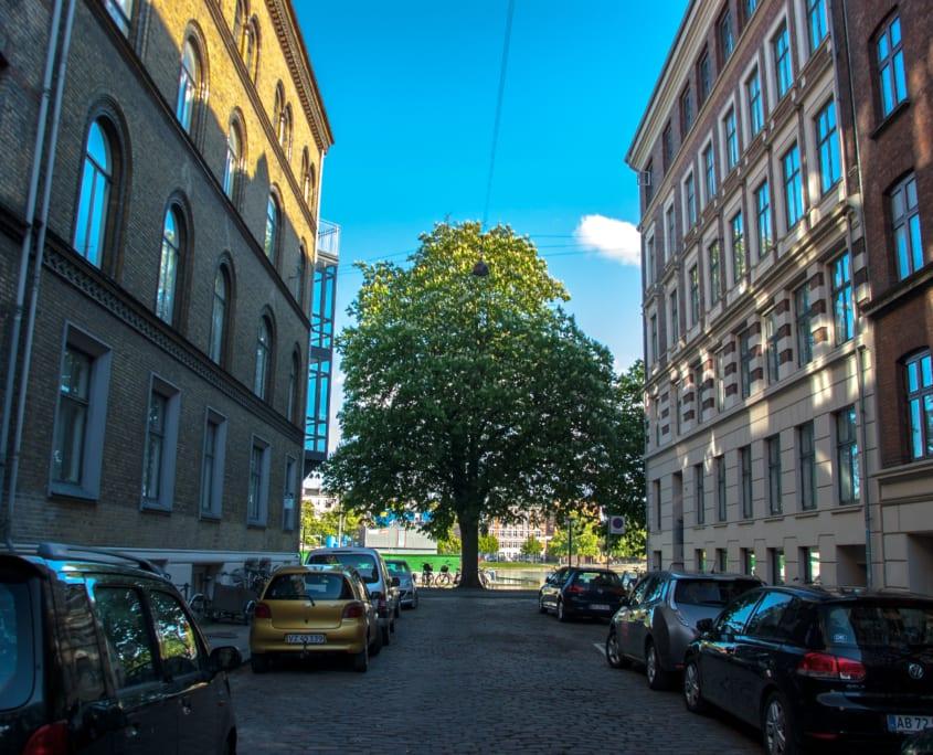 Parijse toestanden in Kopenhagen