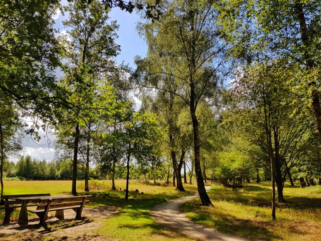 Haaksbergerveen tijdens fietstocht door Twente en de Achterhoek
