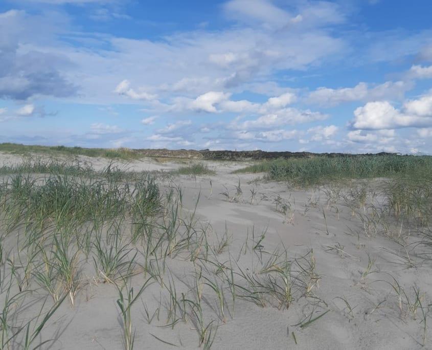 Het breedste strand van Europa: Schiermonnikoog heeft 't