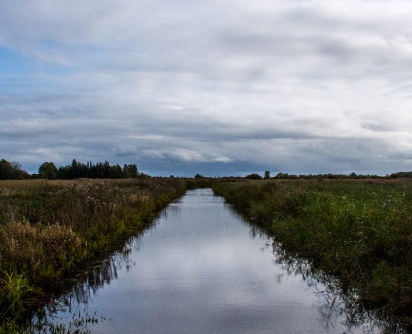 De lucht in de plomp: zo kennen we het landschap van Friesland.