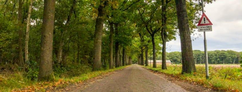 Een stukje Parijs-Roubaix in je tourtocht: voor minder dan slecht wegdek kom ik m'n bed niet uit.