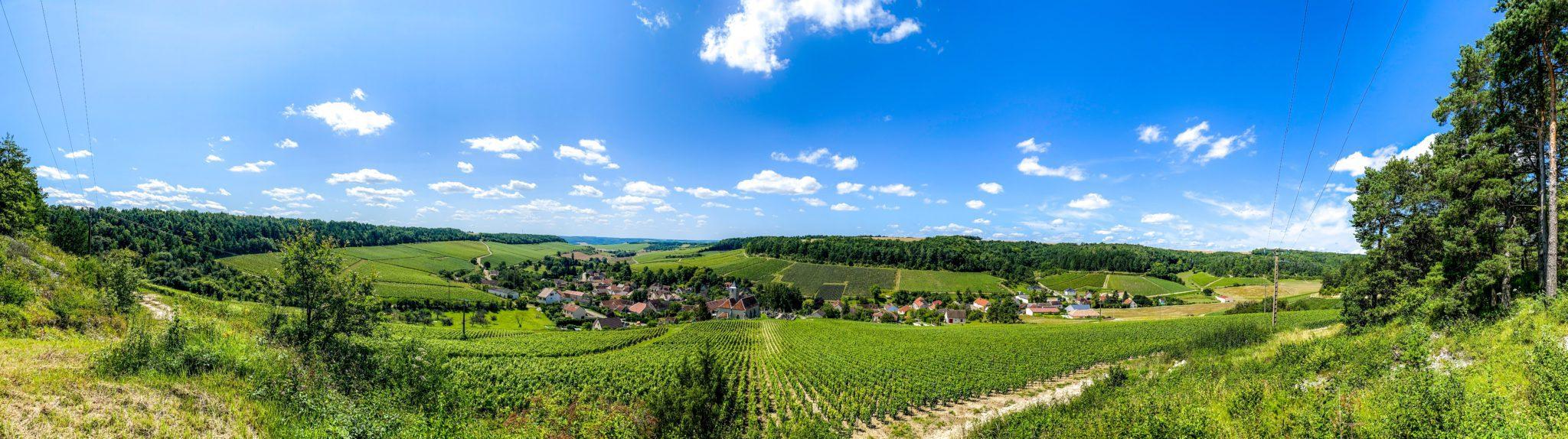 De Côte de Bar: wijnranken en slaperige dorpjes zover het oog rijkt.